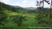 green-fund-rwanda