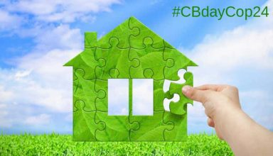 icccad_cbday_cop24